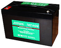 EverExceed ST-12100 на 12В 111Ач - AGM аккумулятор серии Standart Range