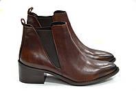 Кожаные ботинки челси коричневого цвета Roberta Lopes к.1685, фото 1