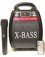 Переносная колонка с микрофоном USB-FM 810 Bluetooth