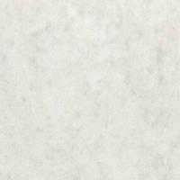 Калька бумажная в рулоне 841 мм. 40 г. 175 м.