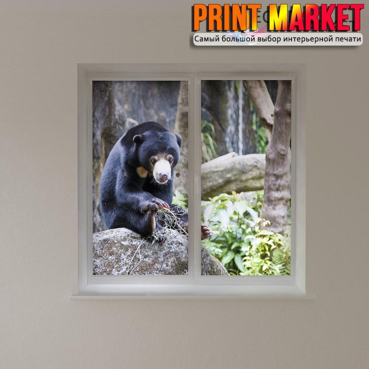 Рулонные шторы с фотопечатью медведь