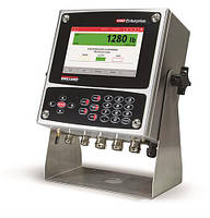 Весовой контроллер Rice Lake Weighing Systems серии 1280 Enterprise Universal, 500 NIT, Двухканальная