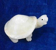 Черепаха из мрамора