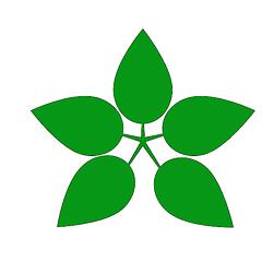 Кормовые травы, культуры