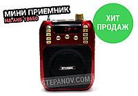 Портативная колонка радиоприемник c аккумулятором 18650 ATLANFA AT-R30