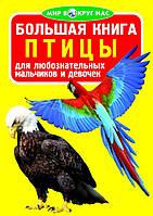 Большая книга.Мир вокруг нас. Птицы