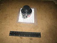 Крышка бака топливного ВАЗ 2108, 21083, 2109, 21093, 21099, 2113, 2114, 2115 с ключом (пр-во ДААЗ). Цена с НДС