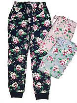 Спортивные брюки утепленные для девочек Glo-Story, 98-128 рр. , арт. grt4899