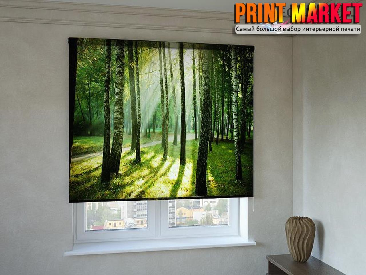 Рулонные шторы с фотопечатью утро в лесу