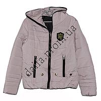 Молодежная демисезонная куртка весна-осень 3535-1 (р-р 42-48) на синтепоне оптом в Одессе.