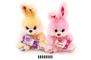 Мягкая игрушка Зайчик с подушкой 3598\55, 2 цвета, 55 см