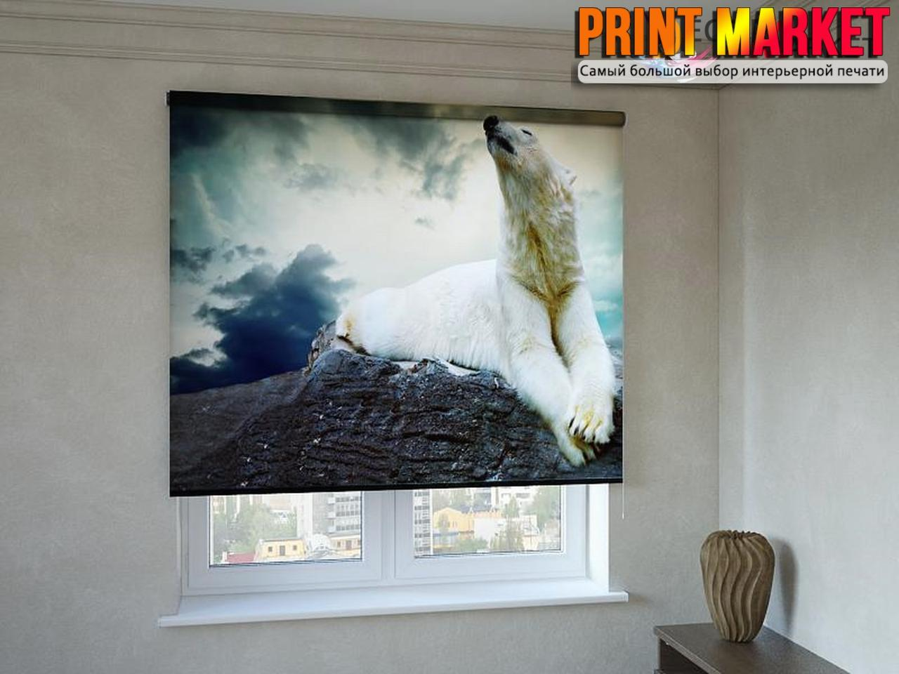 Рулонные шторы с фотопечатью белый медведь