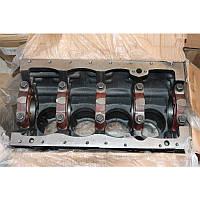 Блок цилиндров YSD490, JAC 1020 (Джак 1020) 11JAC1020