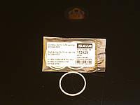 SATA Уплотнительное кольцо для воздушного колпака (4000B)