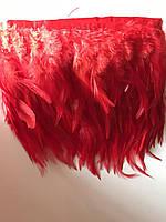 Перьевая тесьма из перьев петуха.Цвет на красный.Цена за 0,5м