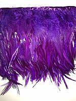 Перьевая тесьма из перьев петуха.Цвет на фиолетовый.Цена за 0,5м