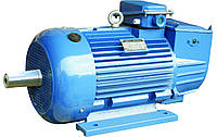 Крановый двигатель 4МТМ 225L6 (МТН 512-6, МТF512-6) с фаз. ротором 55 кВт 955 об
