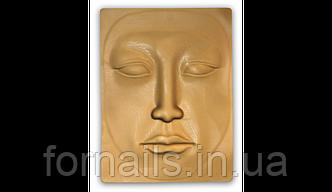 Муляж лица для мастеров перманентного макияжа