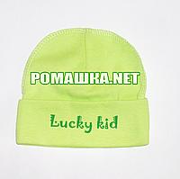 Детская трикотажная шапочка р. 40 для новорожденного отлично тянется ТМ Sweet Mario 3841 Зеленый