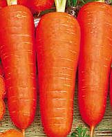 Семена Моркови Витаминчик, (Германия), 0,5кг
