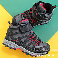 Фирменные ботинки евро зима для мальчика ТМ ТомМ р. 31,32,33,34,35,36,37,38