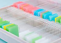 Стекла предметные с цветной зоной для  маркировки 26х76х1 50 шт в упаковке