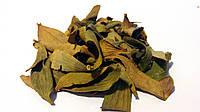 Омела белая листья 100 грамм, фото 1