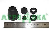 Ремкомплект главного цилиндра тормоза и сцепления (РСМ-10.04.14.150)