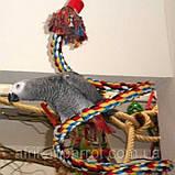 Іграшка-гойдалка для птахів.(Спіраль велика), фото 3