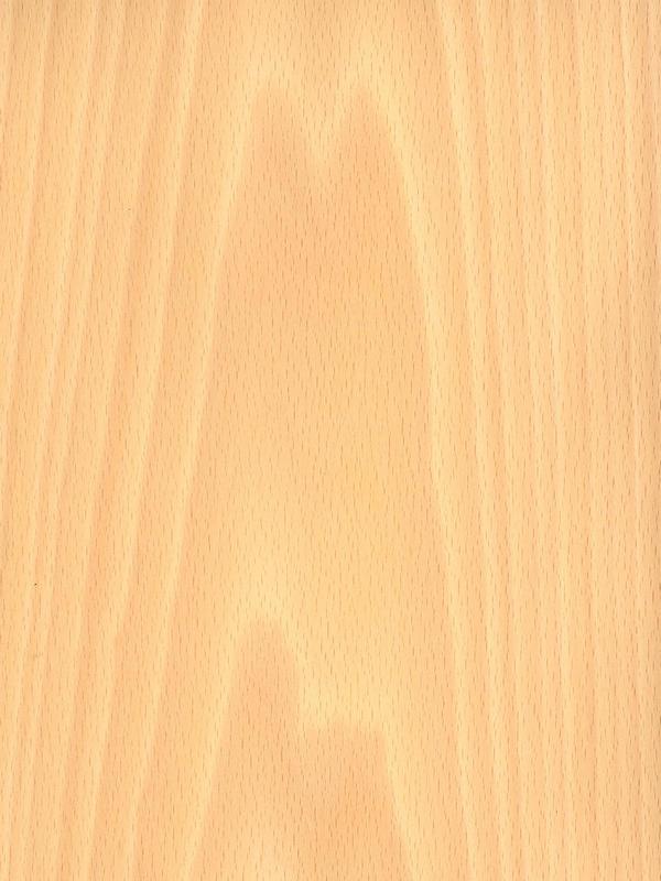 Шпон Бук 2,5 мм