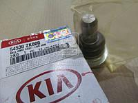 Шаровая опора Kia Rio/Morning/picanto 11-/Soul 08- (пр-во Mobis)