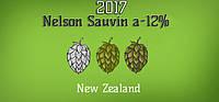 Новое поступление: Хмель Nelson Sauvin (NZ) 2017г.