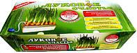 Гидропонная установка для выращивания зеленого лука Луковое счастье