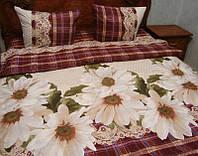 """Комплект постельного белья двуспальный """"ромашки"""",ранфорс."""