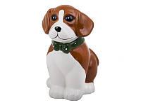 Собака копилка керамическая