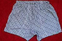 Детские трусы мальчиковые шортами серые в черточку от 36 размера