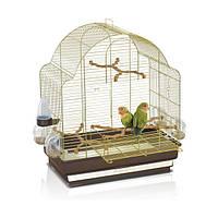 Клетка для средних попугаев Imac ELISA 50*30*58 см