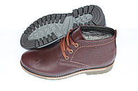 Кожаные ботинки зимние , коричневые, Б33