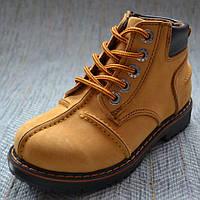 Бежевые ботинки для мальчика, Minican размер 28 29 30