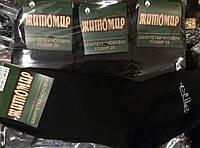 Житомир носки мужские