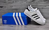 Мужские и женские кроссовки Adidas Superstar Original