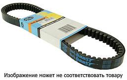GT 31804 - Ремень вариаторный