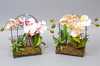 Орхидея искусственная (21*14*6 см)