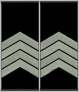 """Погоны """"Старший сержант"""" на липучке, фото 2"""
