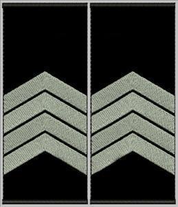 """Погоны """"Старший сержант"""" муфта"""