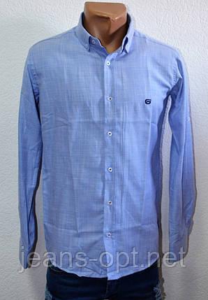 Рубашка мужская Gaft 90523, фото 2