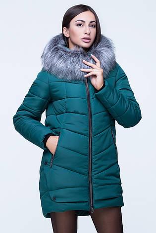 Зеленая зимняя женская удлинённая куртка с натуральной опушкой  , фото 2
