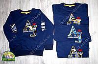 Кофта Armani Jeans для мальчика темно-синяя