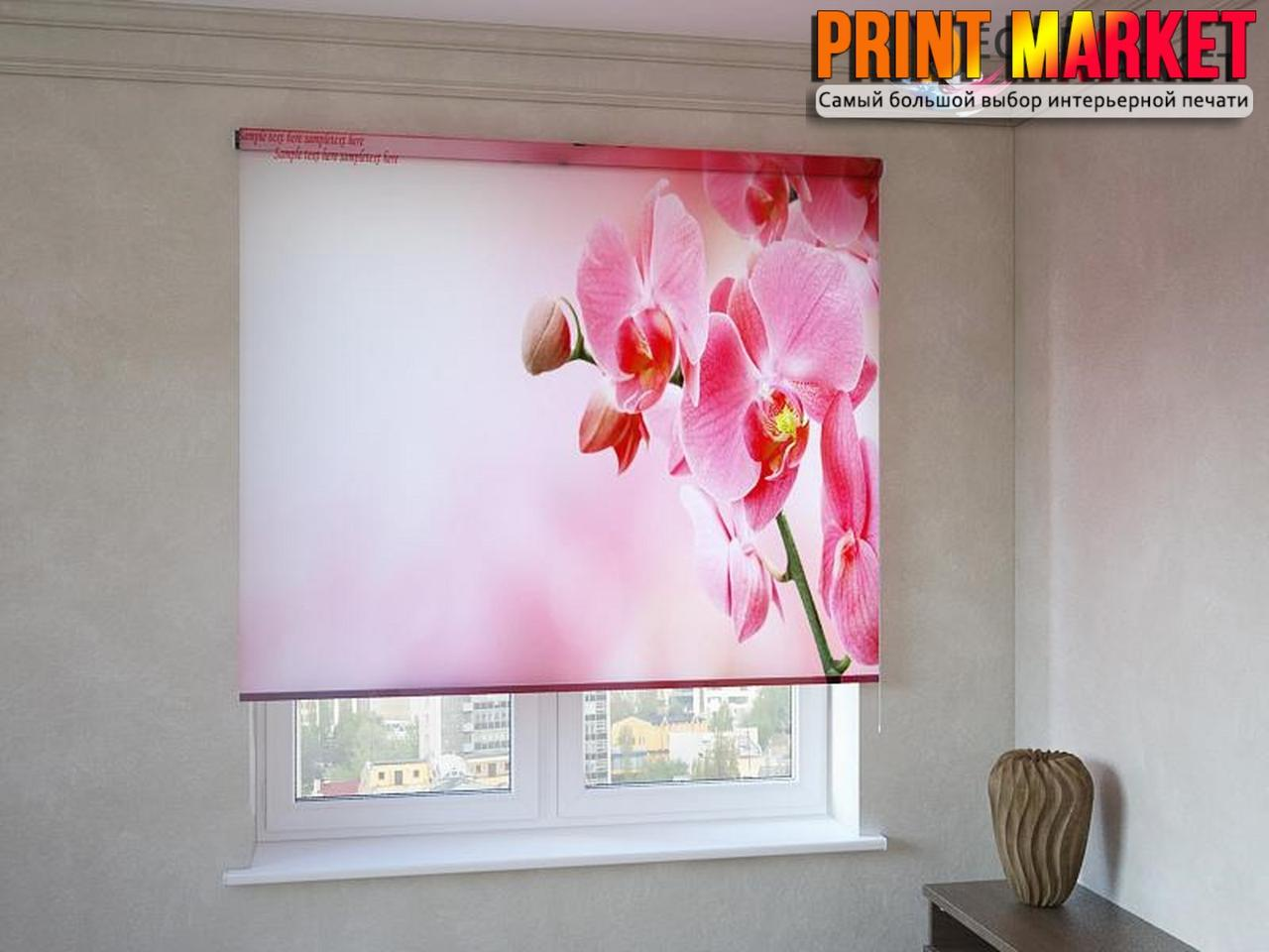 Рулонные шторы с фотопечатью красно-розовая орхидея