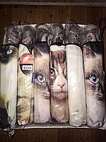 Женский зонт коты полуавтомат в расцветках